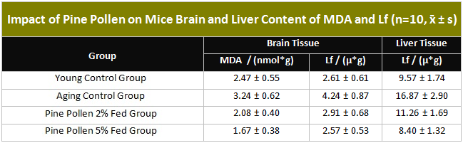Table showing Impact of Pine Pollen on Mice Brain and Liver Content of MDA and Lf