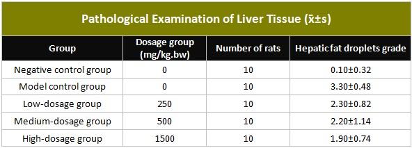 Таблица, иллюстрирующая патологическое исследование ткани печени